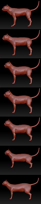 cat_proportion
